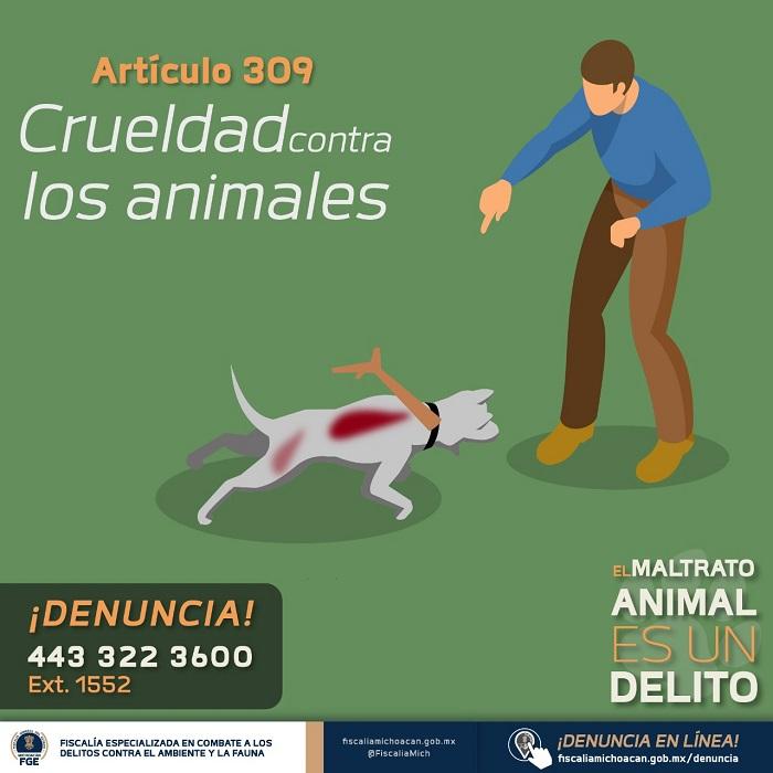 ¿Cómo se castiga el maltrato animal en Michoacán?